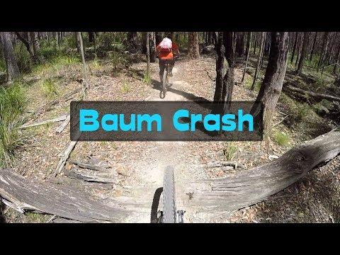 baum-crash- -wombat-forest- -mtbtravelgirl