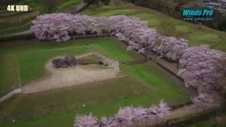 石舞台古墳 蘇我馬子(そがのうまこ)の墓と伝えられる石舞台古墳〈6世...