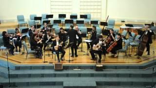 A.Vivaldi - Concerto for Lute (Mandolin) in D Major RV 93 - III Movement