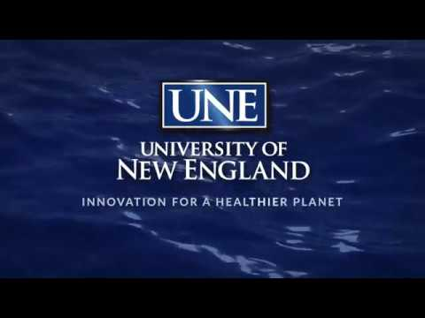 2017 UNE Sports Hall of Fame