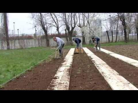 Come fare un orto camminamenti e letto di semina 2a