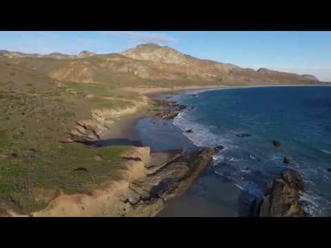 Ancient Giants of the California Coast - ROBERT SEPEHR