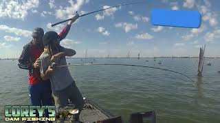 Teams Fishing Australia Mulwala Round Fishing for Cod and Golden perch