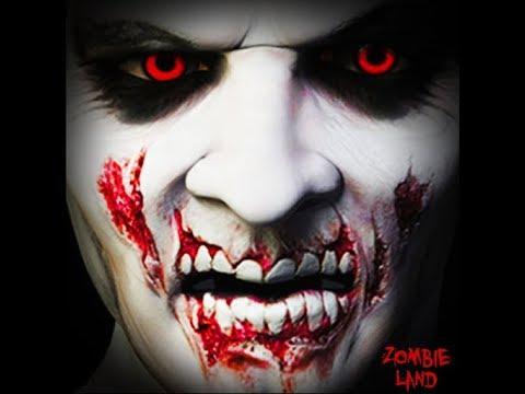 Zombie Land - Video   GIF   Photo Editor