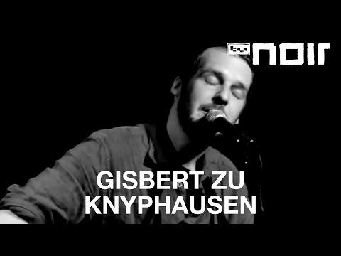 Gisbert zu Knyphausen - Kräne (live bei TV Noir)