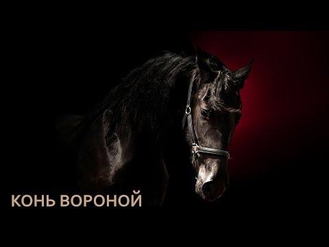 Иван Кучин  - Конь Вороной