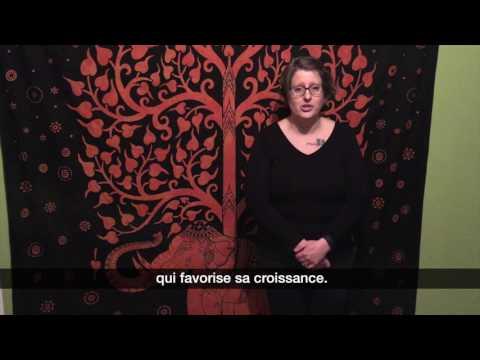Krista : «L'Héritage vivant»
