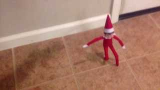 Elf on the shelf comes to our house and creates a stop motion video...