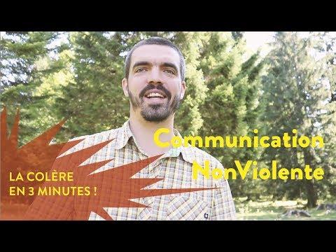 Vincent Delfosse : la colère en 3 minutes