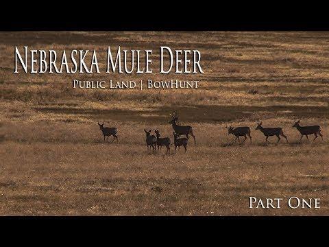 Nebraska Mule Deer Bow Hunt   Public Land