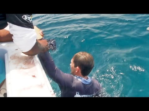 Fisherman Pulled Overboard By Giant Fish - Ft. Kanalgratisdotse