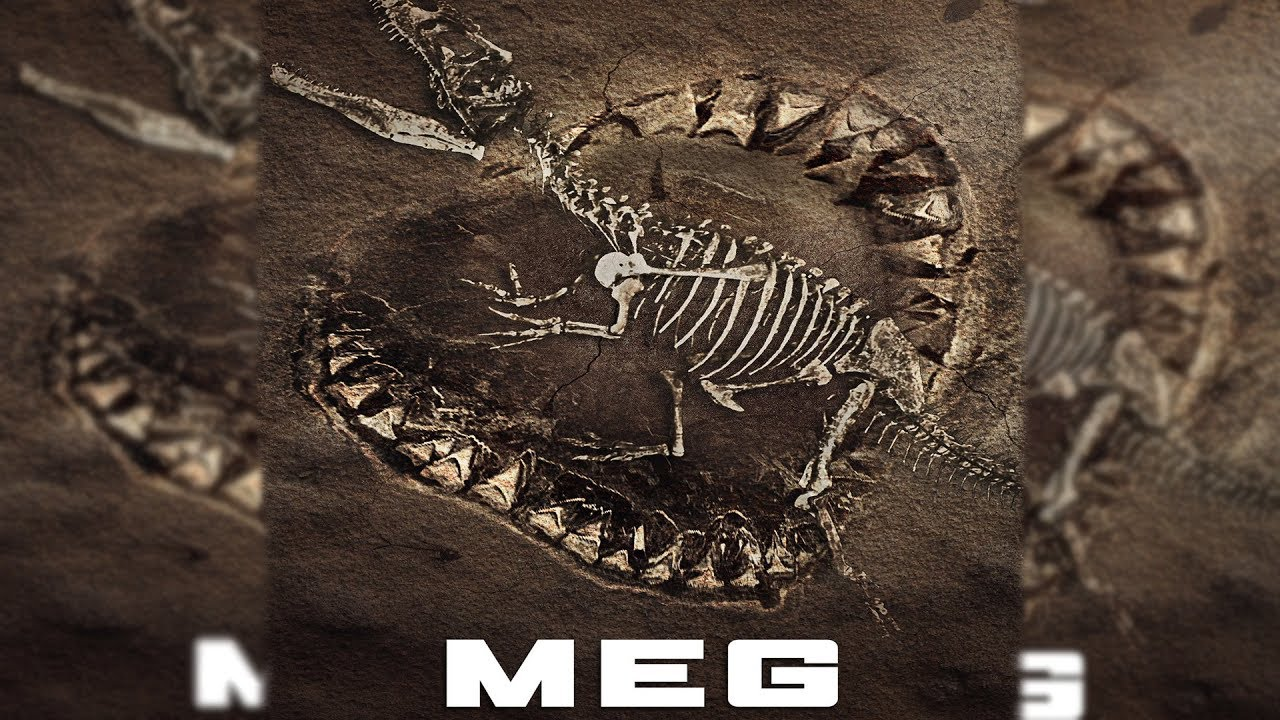 Meg Movie 2018 Update - Story And Release Date Revealed! (Megalodon) - YouTube