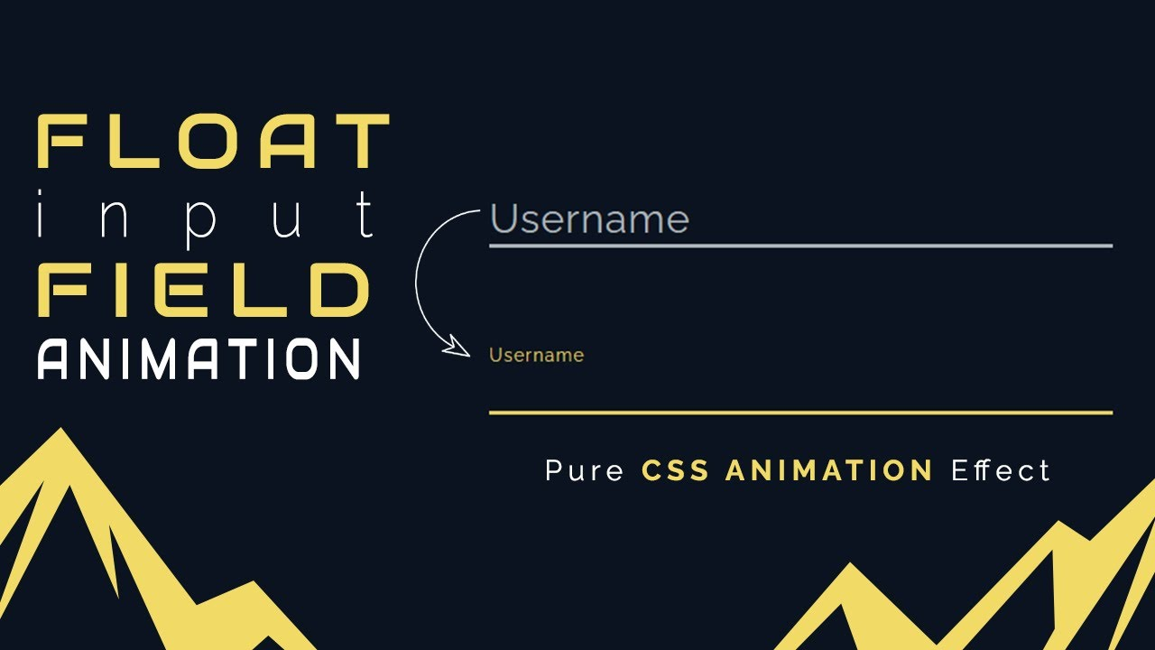 Float Input Field Animation With HTML & Pure CSS | No JavaScript
