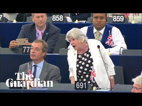 Ann Widdecombe Likens Brexit To The Emancipation Of Slaves In EU Parliament Speech