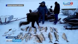 Для жителя Ненецкого округа незаконная рыбалка закончилась реальным приговором