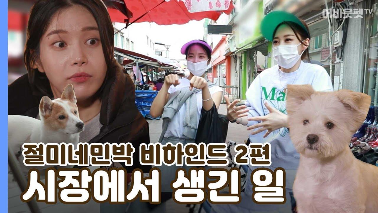 [절미네 민박] 시장에서 즉흥 라이브 ♪하는 마마무와 비하인드 먹방까지!ㅣ어바웃펫