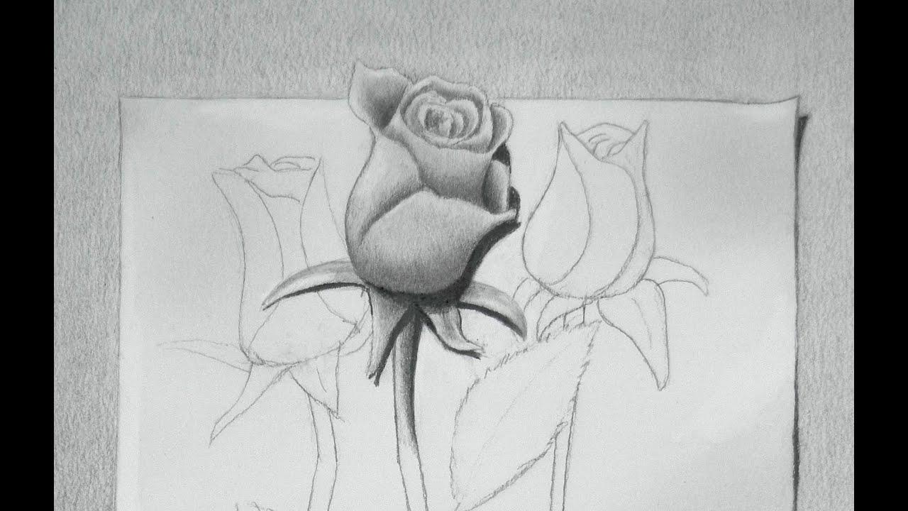 Dibujando rosas cmo dibujar una rosa en 3D  Arte Divierte  YouTube