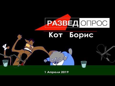 Разведопрос: КОТ БОРИС (Анимация)