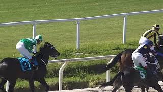 Vidéo de la course PMU CLASICO JORGE Y MELCHIOR PACHECO STAKES