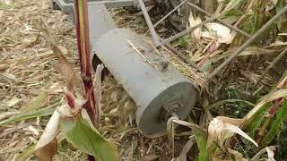 Sieczkarnia orkan do kukurydzy własnej konstrukcji