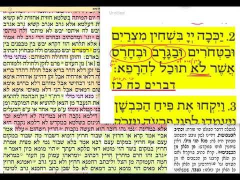 הדף היומי מסכת בכורות דף מא 41 שלישי כ״ג אייר תשע״ט Daf yomi Bechoros daf 41 Shmuel Navon