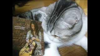 森恵さんの曲をVocaloidのMeguさんに歌ってもらいました。ねこさんの絵...