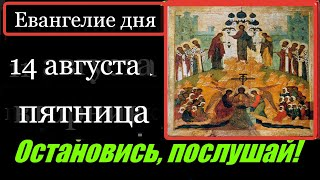 14 августа Пятница ЕВАНГЕЛИЕ дня с толкованием АПОСТОЛ Церковный календарь Молитва