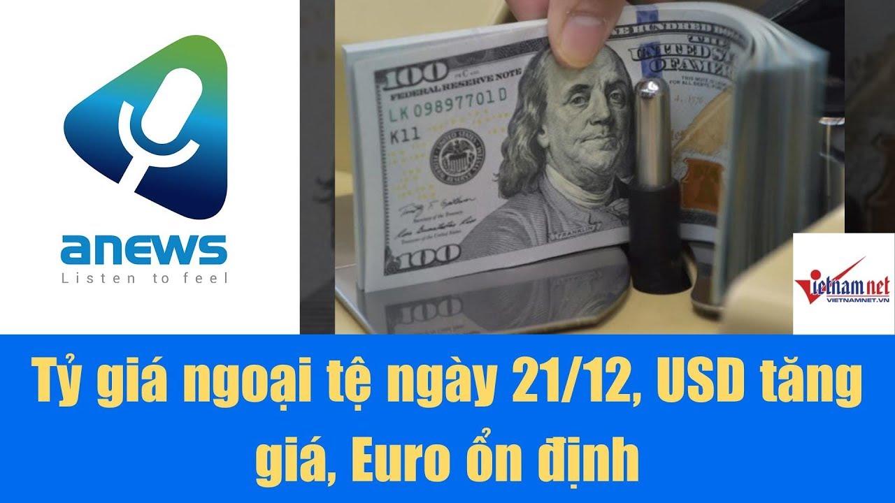 Tỷ giá ngoại tệ ngày 21/12, USD tăng giá, Euro ổn định