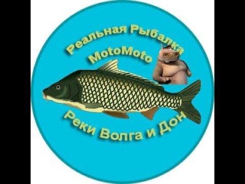 Фарм на Волге и Дону   Реальная Рыбалка