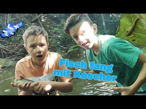 Fische Fangen Mit Kescher (TOP???)