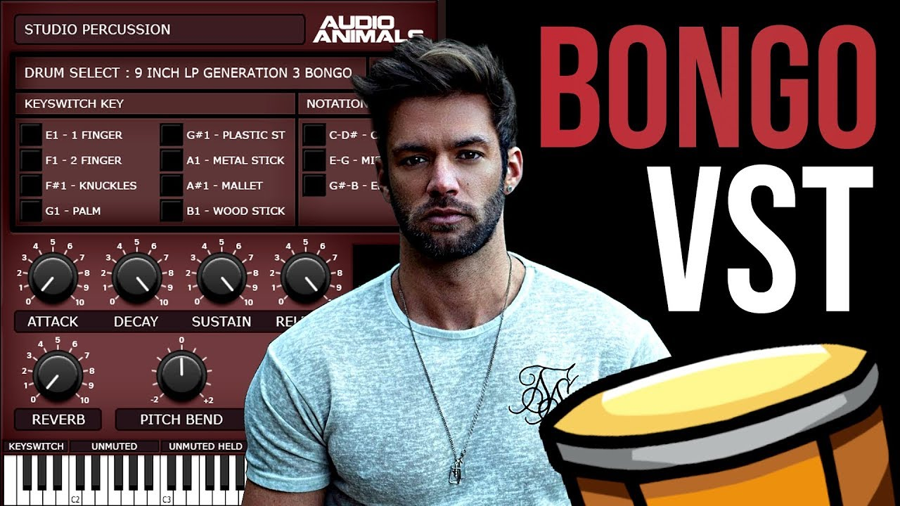 Free Ethnic Bongo Drum Sounds   Audio Animals VSTi Review