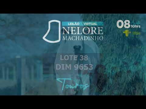 LOTE 38 DIM 9653