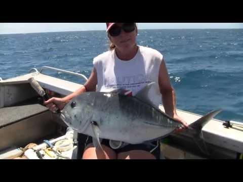 Cape York Melville 2012