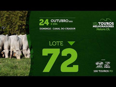 LOTE 72 - LEILÃO VIRTUAL DE TOUROS MELHORADORES  - NELORE OL - PO 2021