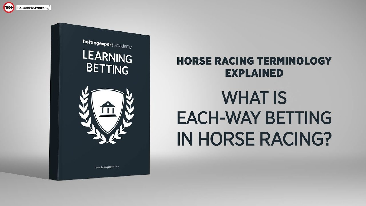 Each way betting terms glossary sports betting parlay tips