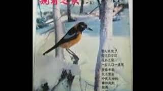 姚莉选曲 Yao Li's Song Selection