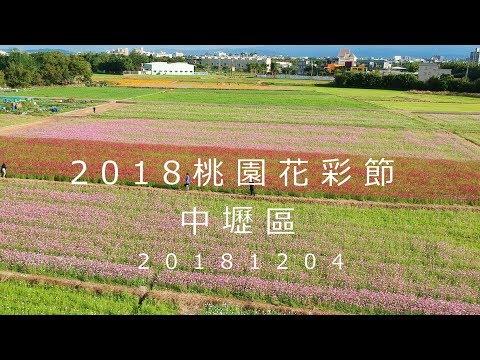 2018桃園花彩節-中壢區 20181204