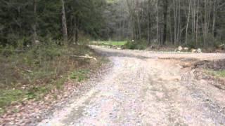 Lake of Bays Muskoka ATV Trails