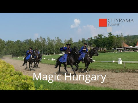 Godollo Palace with Carriage Ride & Horse Show - Video