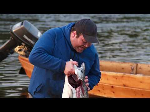 Epic Salmon Fishing In Norway - Alta River