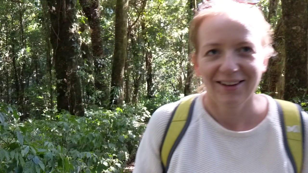 2020 ceļojums 4.Don Inthanon national park