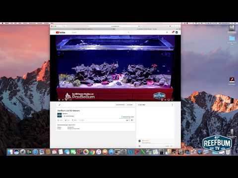 How To Live Stream A Webcam To YouTube