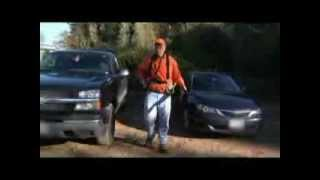 German Shorthaired Pointers Pheasant Hunting Nh 2010 Nh Fish And Game
