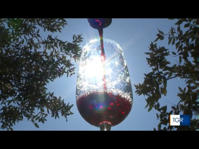 Bilancio Vini d'Abruzzo 2020