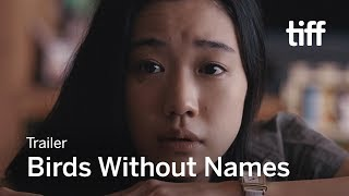 BIRDS WITHOUT NAMES Trailer | TIFF 2017