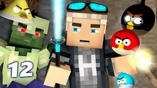 ANGRY MINECRAFT 12 - (Angry Birds 3D Minecraft Animation) Spider and Zombie Encounter