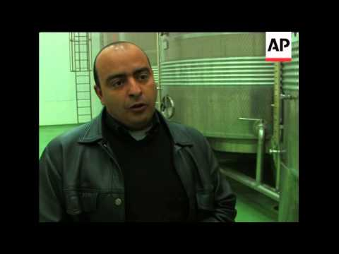 Tunisia's growing olive oil production