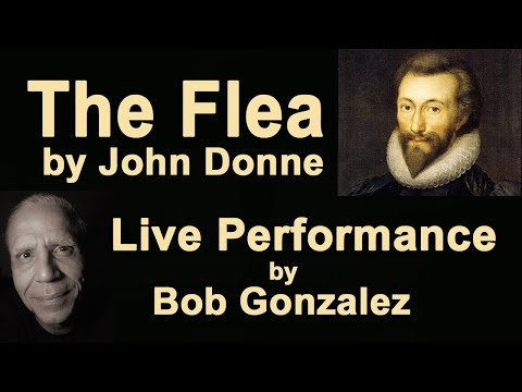 """Poetry performance: """"The Flea"""" by John Donne"""