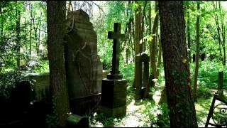 Der alte Friedhof; Der Verfall