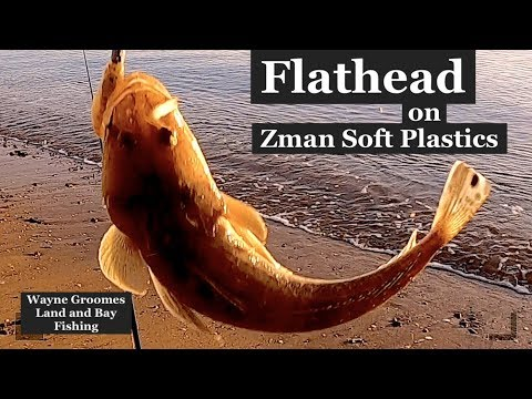 How To Catch FLATHEAD Land Based With Soft Plastics